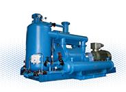 SKA(2BE1、2BE3)系列水环压缩机组(H2、