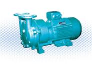 SKA(2BV)系列水环真空泵及压缩机